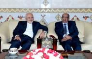 وزير الخارجية الإيراني يشرع في زيارة إلى الجزائر في إطار جولة بالمنطقة